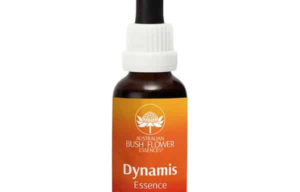 AFD010: Dynamis Combination Drops